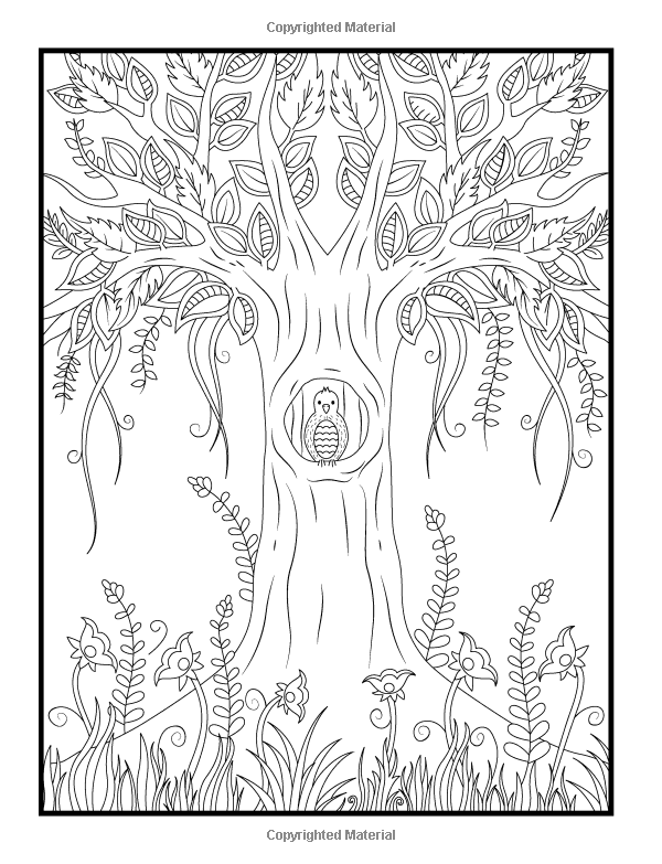 Amazoncom Magical Forest An Adult Coloring Book With Enchanted