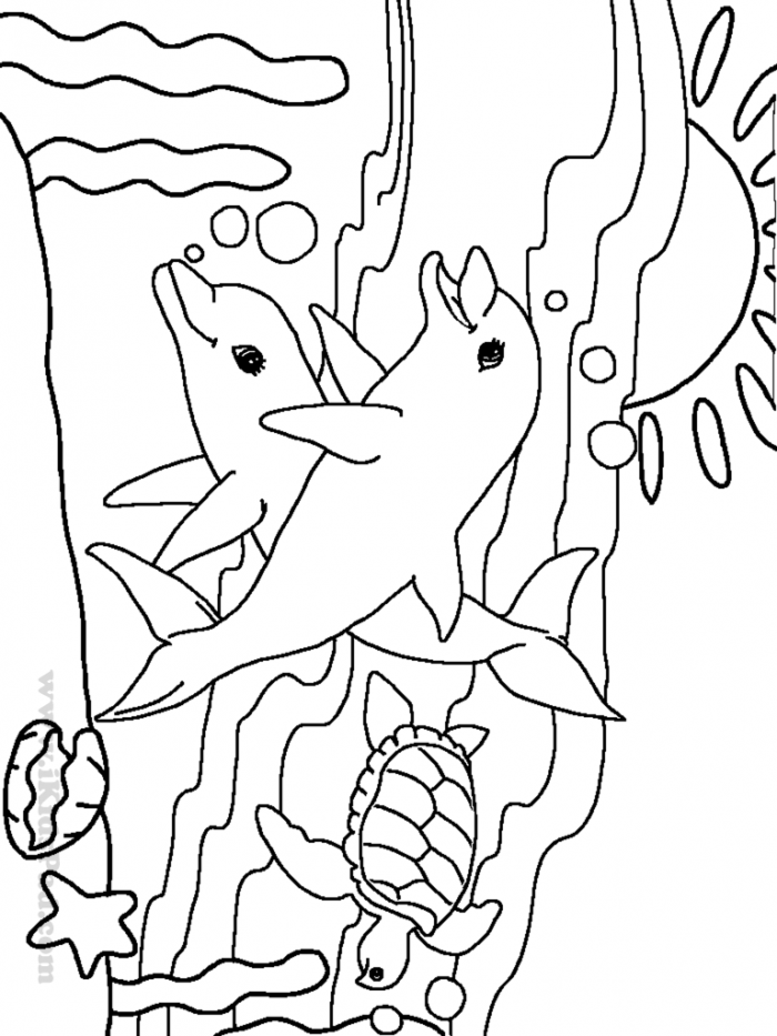 Beautiful Sea Animal Coloring Pages  On Coloring Pages For