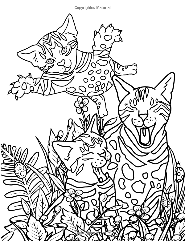 Amazoncom The Big Coloring Book Of Bengal Cats Color Me Happy