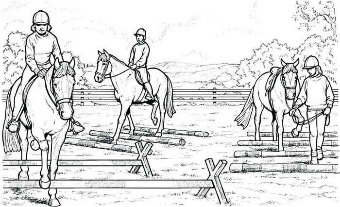 Cool Horse Coloring Pages Printable