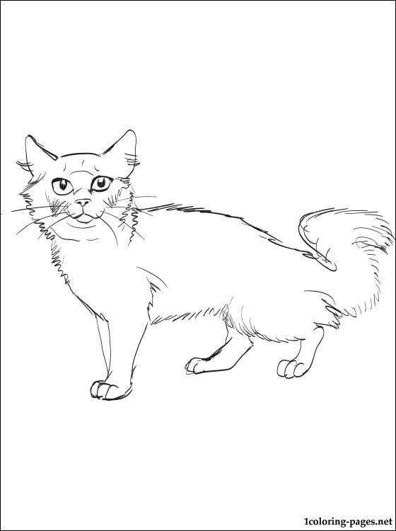 Siberian Cat Coloring Page