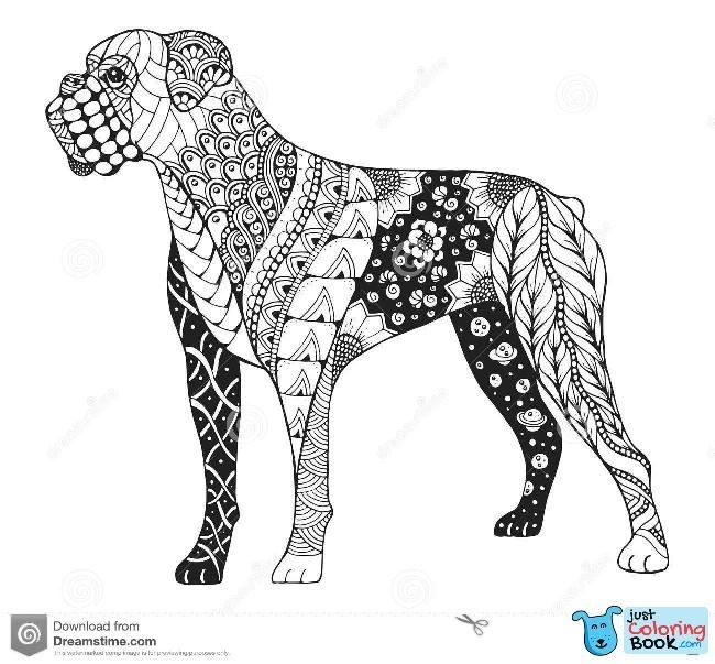 Boxer Coloring Page Boxer Love Boxer Dogs Boxer Dog Tattoo Dog