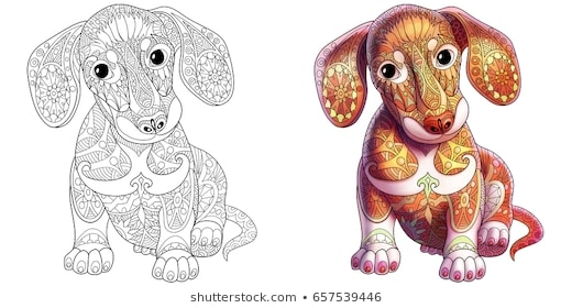 Dog Coloring Page Images  Stock Photos   Vectors