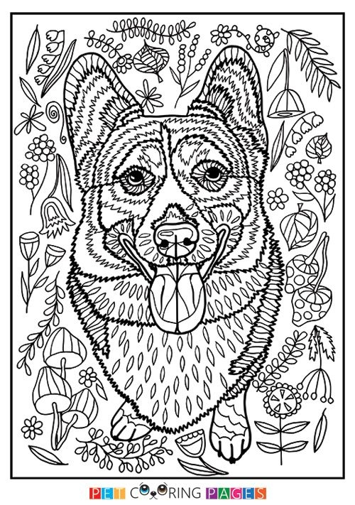 Free Printable Pembroke Welsh Corgi Coloring Page Available For
