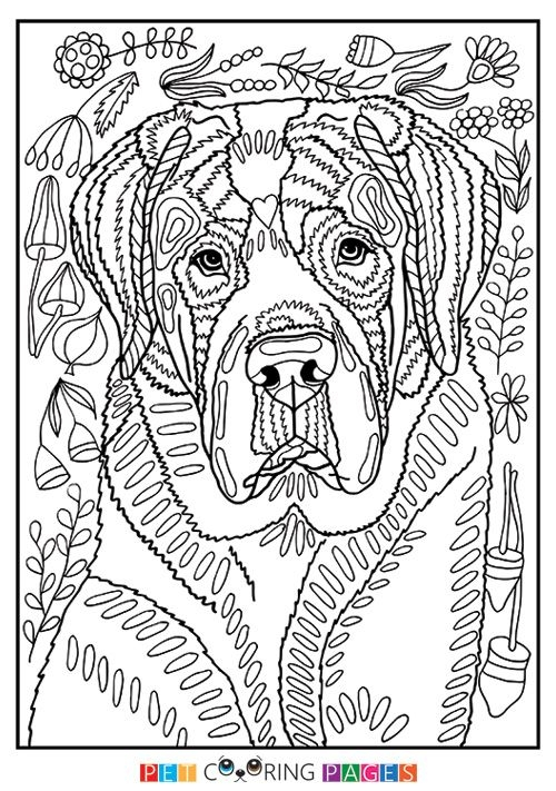 Free Printable Saint Bernard Coloring Page Available For Download