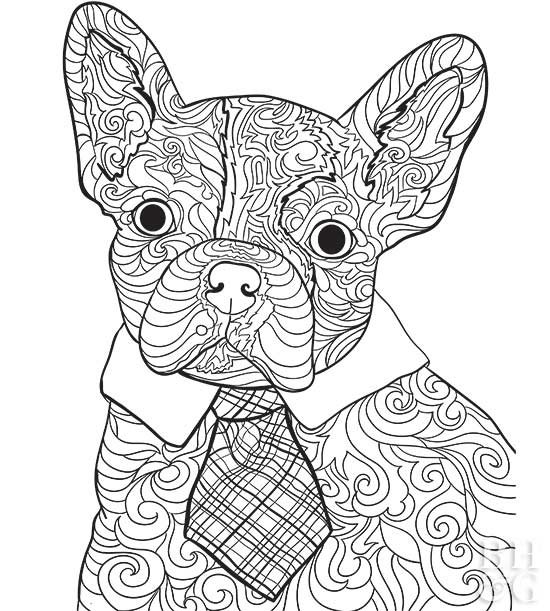 French Bulldog Coloring Pages Printable