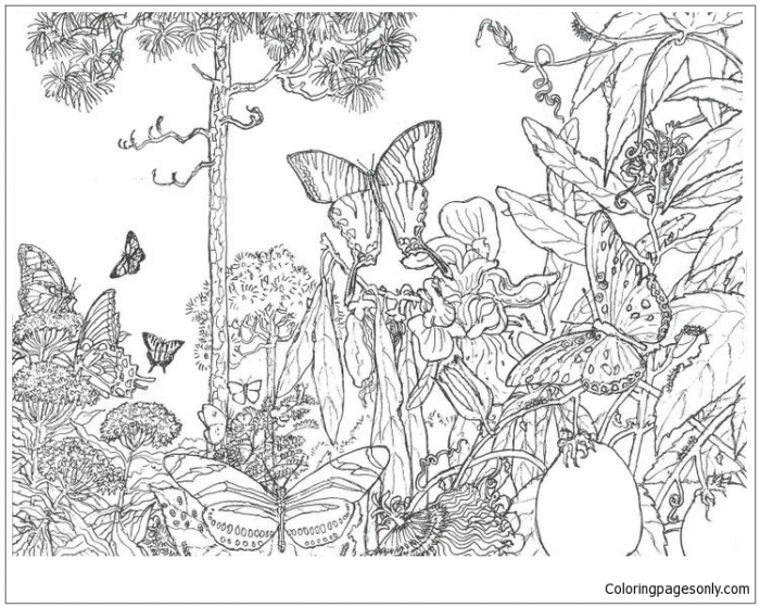 Natural Forest Landscape Coloring Page