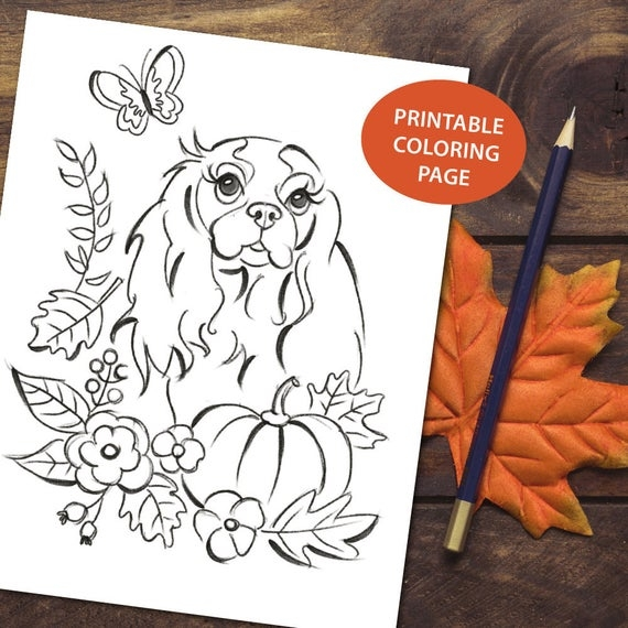 Printable Coloring Page Cavalier King Charles Spaniel Autumn