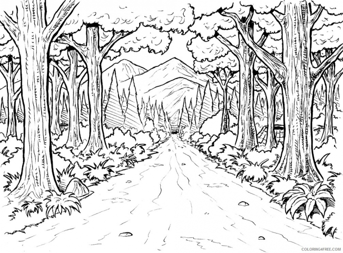 Amazon Rainforest Coloring Pages To Print Coloringfree