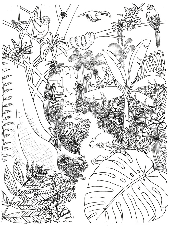 Coloring Pages  Jungle Coloring Pages For Adults Scene Free