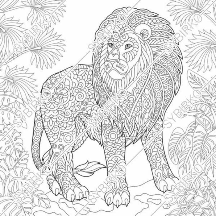 Coloring Pages Lion Wild Jungle Cat Animal Coloring Book