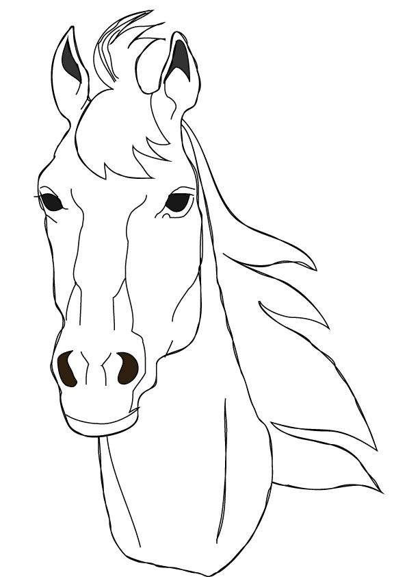 Download Free Horse Face Coloring Page