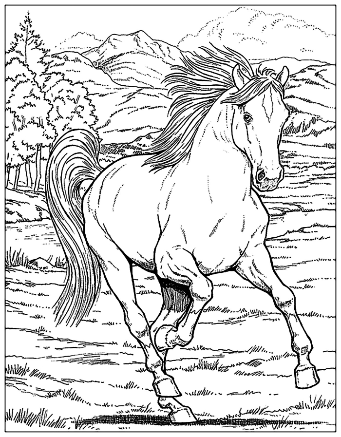 Free Horse Coloring Pages For Adults   Kids