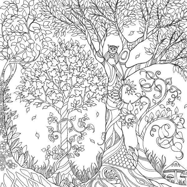 Ks Math Games To Print Enchanted Forest Coloring Pages Free