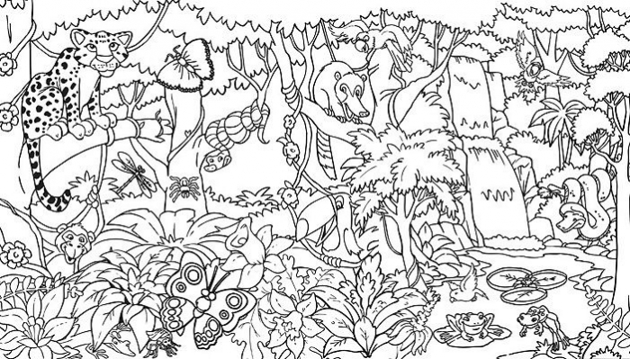 Rainforest Coloring Sheets Printable Amazonhool Pages  Azspring