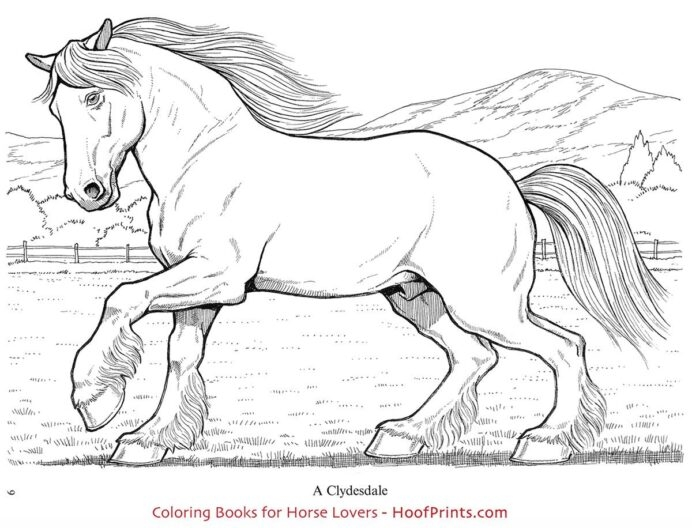 Wonderful World Of Horses Coloring Book Http Oofprints Clydesdale