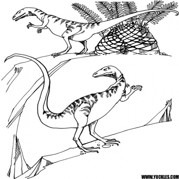 Compsognathus Coloring Page By Yuckles
