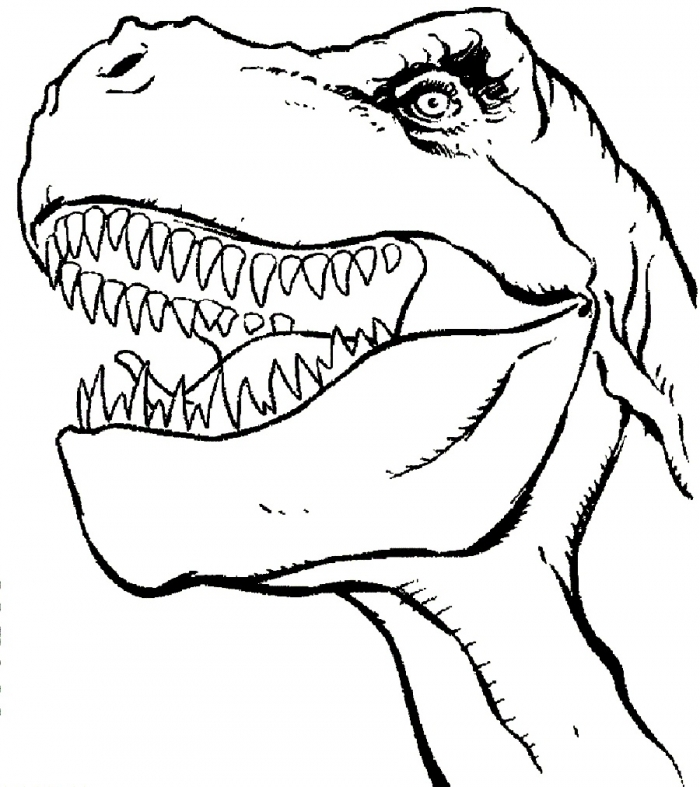 Face T Rex Dinosaurs Coloring Pages  T Rex Dinosaurs Coloring