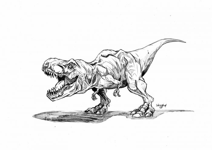 Jurassic Park Trex Colouring Pages