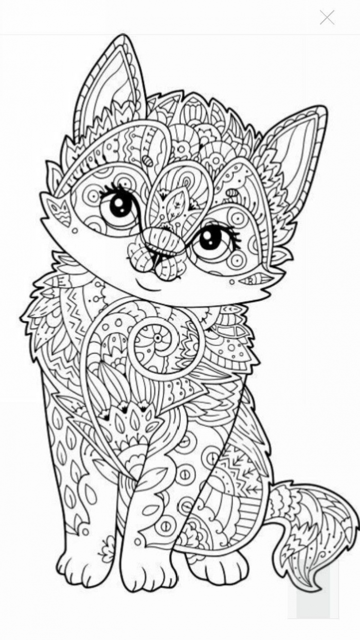 Bathroom Ideas  Kitten Coloring Pages Cute Page Animal Mandala