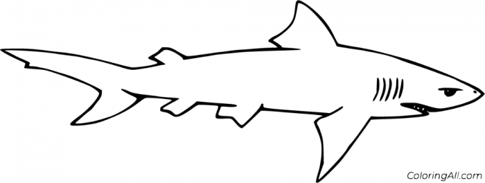 Free Printable Lemon Shark Coloring Pages In Vector Format  Easy