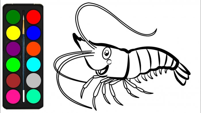Shrimp Coloring Pages For Kids